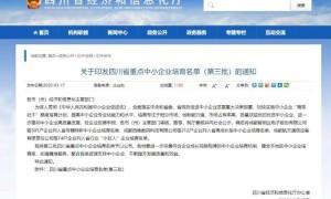 第三批四川省重点中小企业名单公示